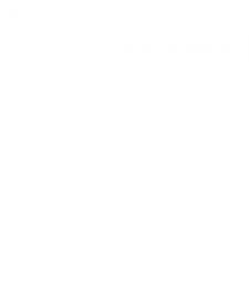 Форсунка основной горелки (газ) (190) 290954